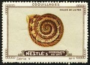 Nestle Serie V No 07 Coquillages